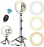 Luz de anillo para selfies de 10 pulgadas con trípode y soporte para teléfono / almohadilla de pantalla móvil / luz de anillo de mini cámara LED para maquillaje, utilizada para video
