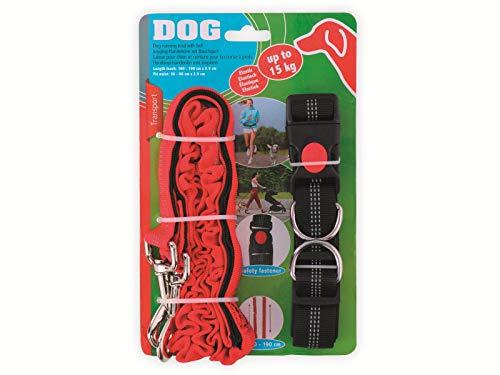 Unbekannt Hundeleine mit Jogginggurt