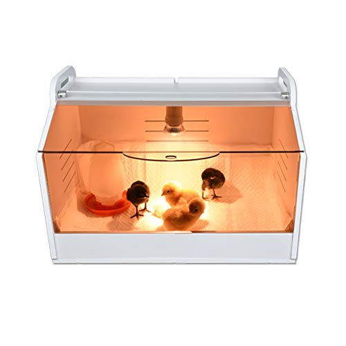 JAEDO Chicken coop Brooder Box Brooder Heater Plate Brooder Panels Chicken House cage Comes ,Warms up to 15 Chicks with Bulb Set (19' x 12' x 12')