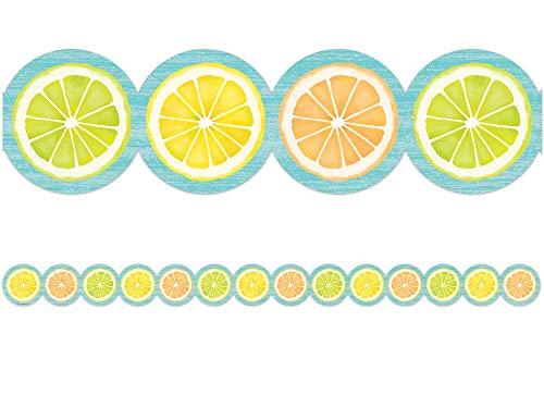 Teacher Created Resources Lemon Zest Citrus Slices Die-Cut Border Trim (TCR8490)