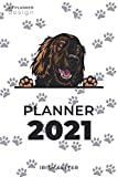 Irish Setter Planner 2021: 2021 Weekly Planner - Cute Irish Setter Dog Books, Calendars & Gifts (150 pages - 6x9 inches)