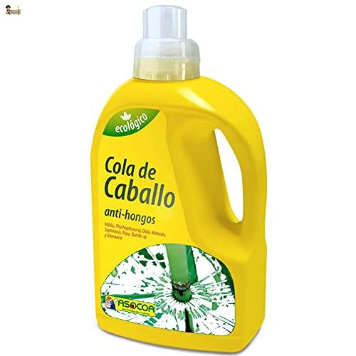 BricoLoco Cola de caballo fungicida para huerto urbano.Ecológico. Envase 1 litro. Apto para agricultura ecológica. Control de hongos y bacterias. (Cola de caballo)