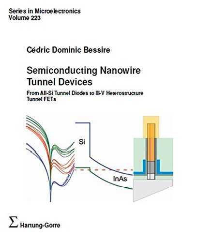 Semiconducting Nanowire Tunnel Devices (Series in Microelectronics)