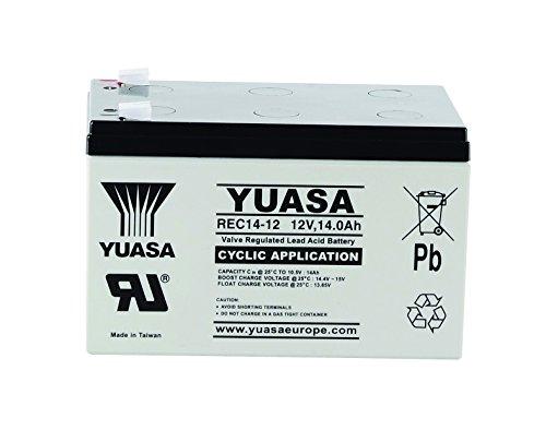 Yuasa - Batería Plomo AGM REC14-12 12V 14Ah F6.35