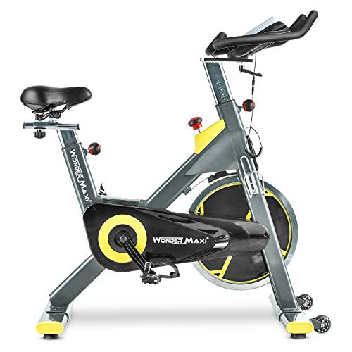 Stationary Exercise Bike with 45Lbs Flywheel - Belt Drive Indoor Cycling Bike with Ipad Holder and LCD Monitor for Home Workout, 330 Lbs Weight Capacity belt Bikes Exercise flywheel indoor quiet recumbent