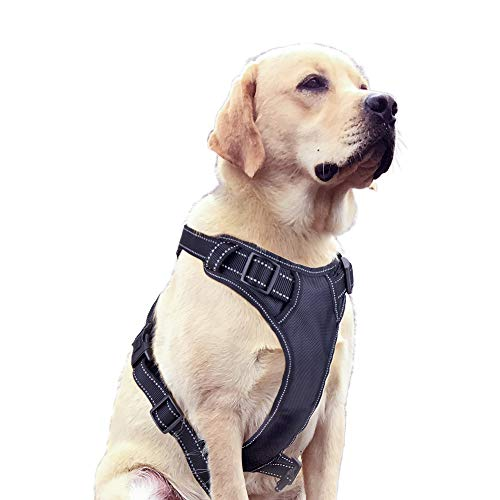 Ditto No-Pull Dog Harness, Adjustable Pet Harness Reflective Oxford Soft Vest with Metal Ring and Comfortable Handle for Small Medium Large Dogs Easy Control –XL