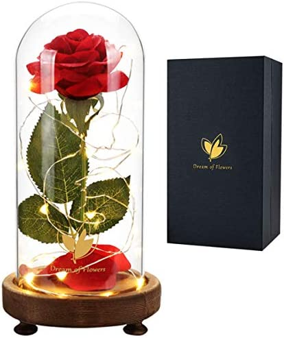 Beauty and The Beast Rose Kit Red Silk Rose Lasts Forever in a Glass Dome with LED Lights Romantic product image