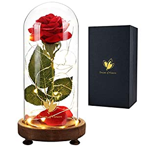 Silk Flower Arrangements Beauty and The Beast Rose Kit, Red Silk Rose Lasts Forever in a Glass Dome with LED Lights, Gift for Women Mothers Day Valentine's Day Wedding Anniversary