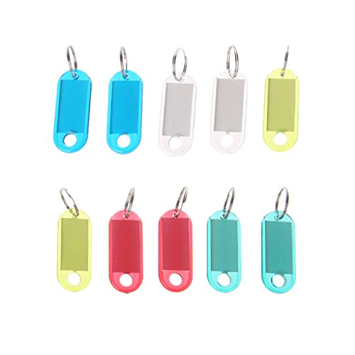 10 Pieces Transparent Plastic Luggage ID Label Key Tags Keychains Keyring Tags with Transparent