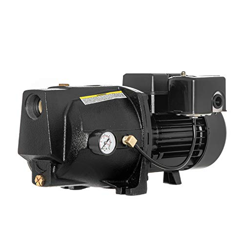 RainBro 1 HP Cast Iron Shallow well jet pump for wells up to 25 ft, shallow well water pump, Model# CSW100