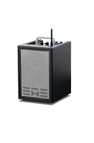 Elite Acoustics Engineering A143de canal amplificador para guitarra acústica Negro