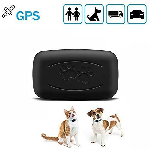 LMHOME Mini-GPS-Tracker für Hunde und Katzen, mit 7 kg Fassungsvermögen, wasserdicht, IP67, Echtzeit-Aktivitätsmonitor, AGPS LBS SMS-Positionierungsgerät mit Halsband (schwarz)