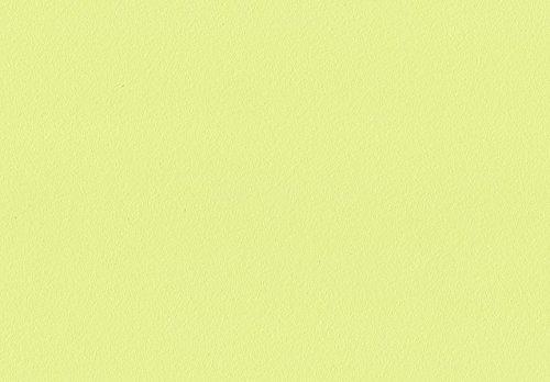 Volvox | Espressivo Lehmfarbe | Bunttöne 1 | Biofarbe | 2,5 Liter | 20 m² (limette | 133)