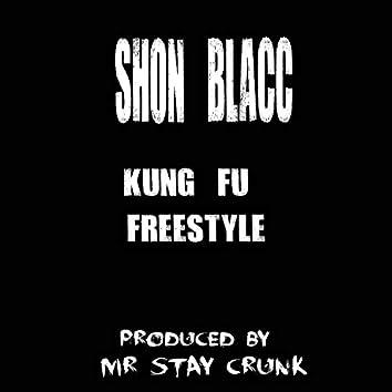 Kung Fu Freestyle