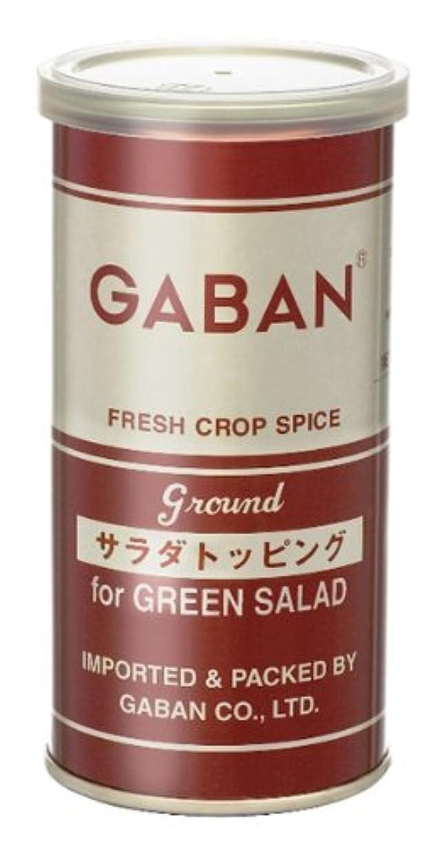 嵐の体現する要件GABAN サラダトッピング 80g