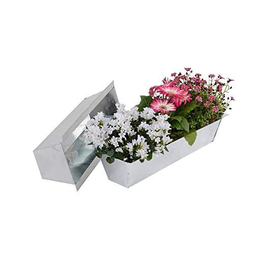 Nature by Kolibri Jardinera para balcón, uso para palés europeos para flores,...