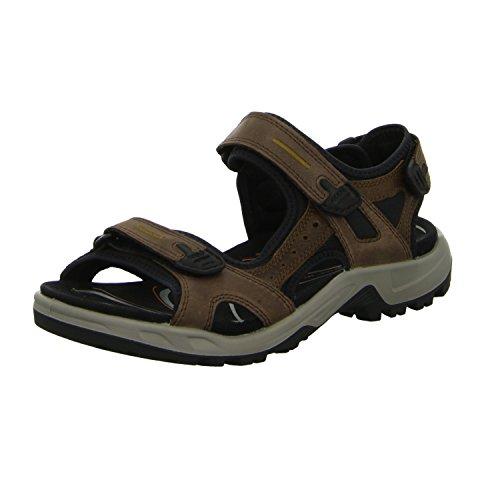 ECCO Herren OFFROAD Flat Sandal, Braun (ESPRESSO/COCOA BROWN/BLACK), 44 EU