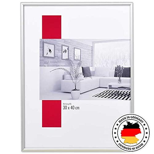 artvera Cornice portafoto in alluminio argento opaco, DIN A4 (21 x 29,7 cm)