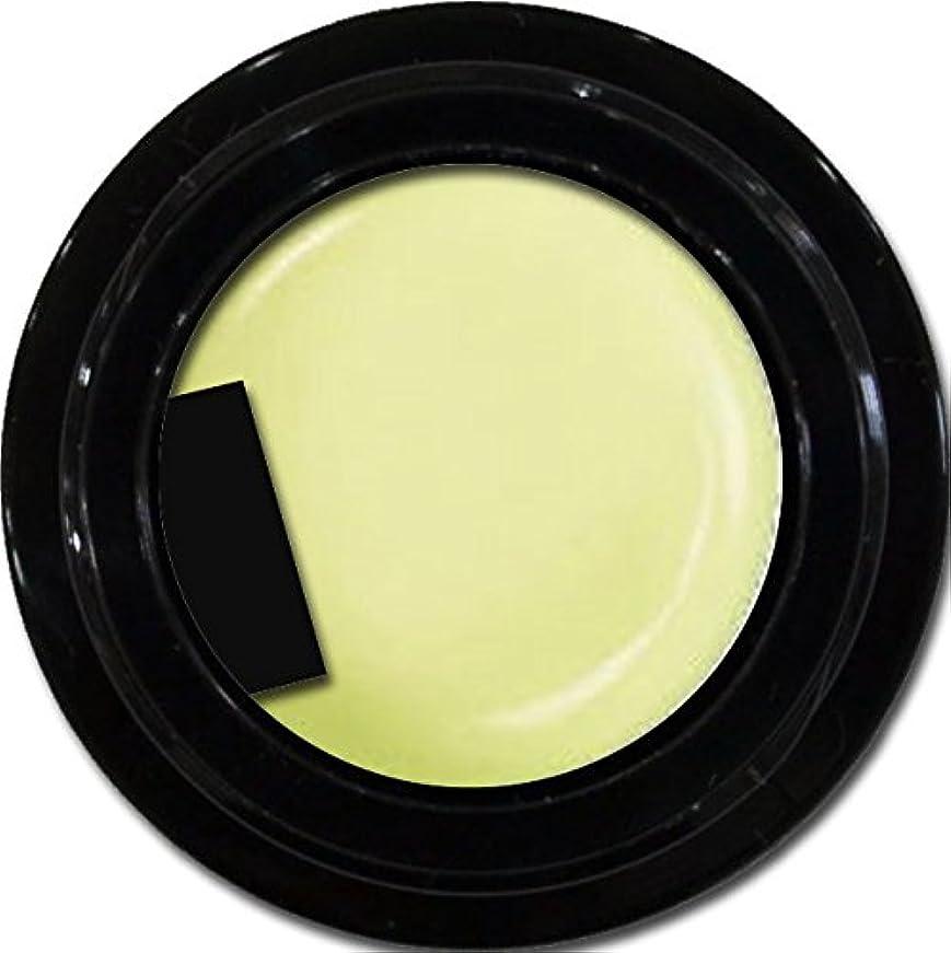 引き出すアナリスト高尚なカラージェル enchant color gel P601 powderYellow 3g/ パールカラージェル P601パウダーイエロー 3グラム