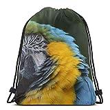 Qian Mu888 Blue Cute Bird Flying Over Lake Bolso de hombro con cordón personalizado, bolsa de gimnasio, mochila de viaje, ligera, gimnasio, para hombre y mujer, 42,9 x 35,6 cm