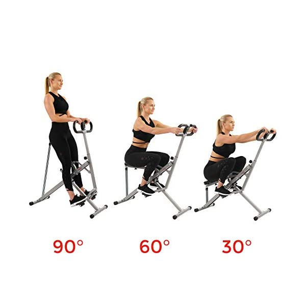 Fitness Equipment Shopping Sunny Health & Fitness Squat Assist Row-N-Ride Trainer for Glutes Workout with
