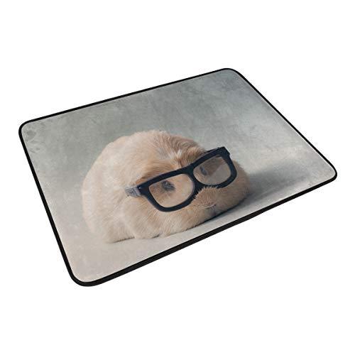 FANTAZIO Lindos vasos patrón de cobayas, felpudos para entrada al aire libre, alfombra recta para cocina/baño, 23.6 x 15.7 pulgadas