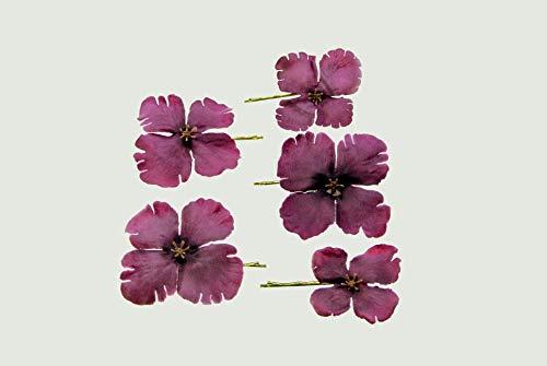 clarigo Haarnadeln Haarklammern Haarklemme Hortensie violett Kommunion Blumen Blumenmädchen