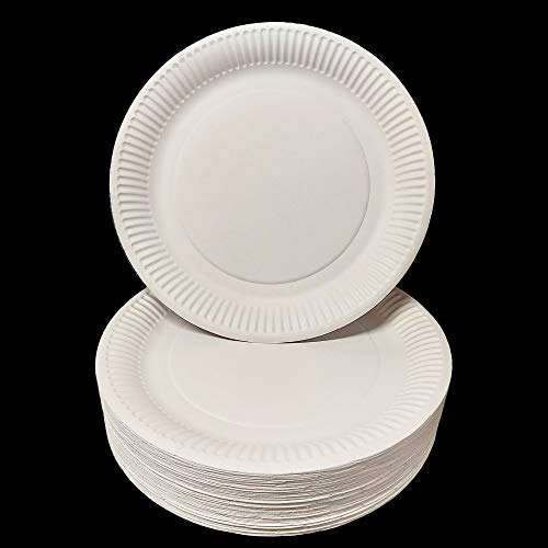 Paper Plates 23cm - Pack of 100 Sealed 9inch Paper Plates, Disposable Plates, Food Plates | DHANZIPAK