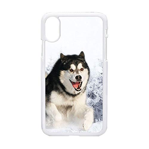 Hombres Carcasa De Teléfono De Plástico Duro Imprimir con Siberian Husky 5 Compatible para Apple iPhone X XS