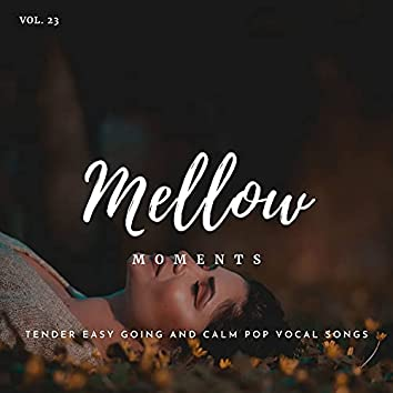 Mellow Moments - Tender Easy Going And Calm Pop Vocal Songs, Vol. 23