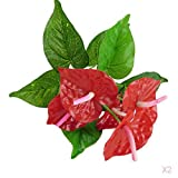 PETSOLA Artificielles Plantes 12 Branches 5 Fleurs D'anthurium Rouges Floral Décoration 33cm