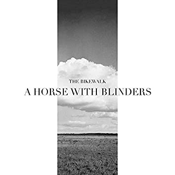 A Horse With Blinders