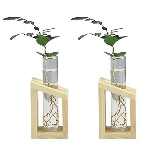 2 szt. Blat Szklana stacja do uprawy roślin po prostu, przezroczysty szklany wazon na rośliny terrarium przezroczysty hydroponiczny wazon na rośliny z litego drewna stojak szklany wazon do sadzenia kwiatów
