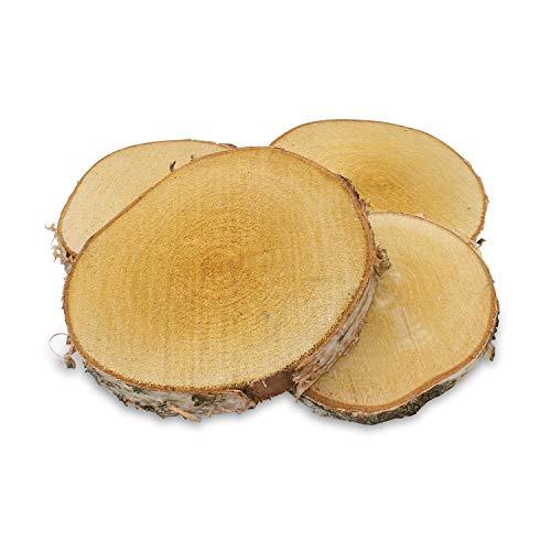 GREENHAUS XXL Birkenscheiben aus Deutschland 15-20 cm 10 Stück sägerau mit Riss Holzscheiben Baumscheiben Baumstamm Holzdeko