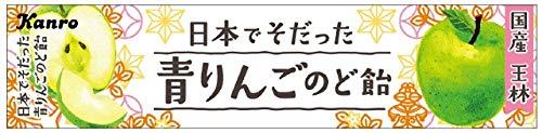 カンロ 日本でそだった青りんごのど飴 11粒 ×10本