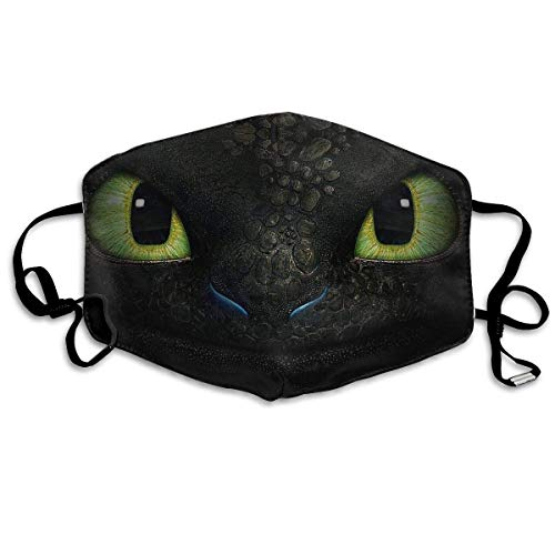 Mundschutz Mouth Co_ver Face Cover Dust-Proof Mouth Scarf How to Train Your Dragon with Reusable Austauschbaren Filter