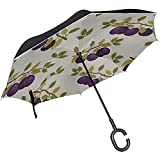 ETGeed Inverted Folding Umbrella Blue Plum Snack Food Trockenfrüchte Reverse Inverted Umbrella Inverted Umbrella