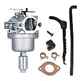 Fried Suave Conjunto del carburador, carburador de reemplazo de Carb for Segadora Craftsman LT1000 LT2000 Motor de Gasolina DLS350 Ventilador de Hoja Cortasetos carburador Escabroso