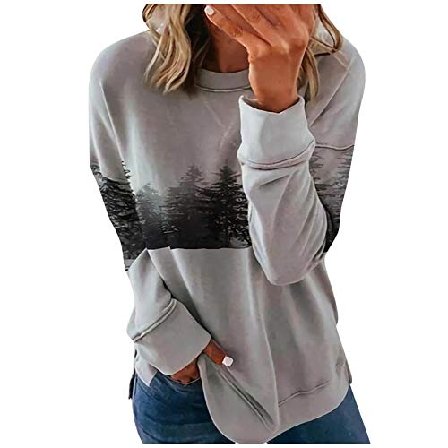 Mesh Top Girls Halloween Shirt 3/4 Sleeve Tunic Tops for Women Vintage Crewneck Sweatshirt Hooded Cardigan for Women(C-Gray,M)