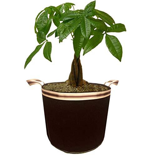 GOOHEAL Plant Grow Bags, 5Pcs 10 Gallon Home Garden Plant Growing Seedling Fabric Pot Fruit Seeds Plants Thicken, Gardening Tools