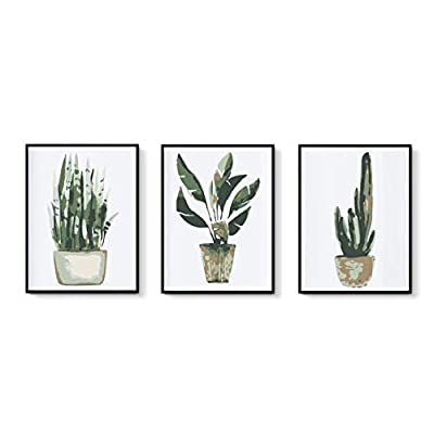 3 Pack DIY Painting by Numbers for Adults Begin...