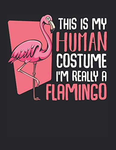 This Is My Human Costume I'm Really A Flamingo: A4+ Softcover 120 beschreibbare karierte Seiten | 22 x 28 cm (8,5x11 Zoll)