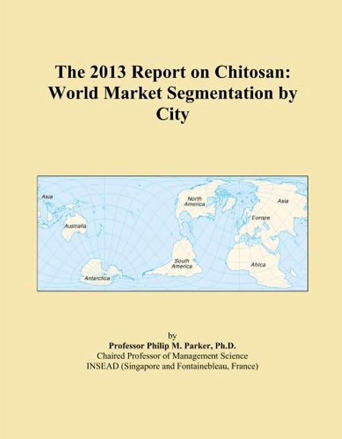 アイデア統治可能規定The 2013 Report on Chitosan: World Market Segmentation by City