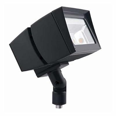 RAB Lighting FFLED39 Future Flood 39-watt Cool Led 120-volt To 277-volt, Bronze, Hardwired