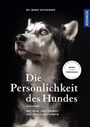 Die Persönlichkeit des Hundes: Wie Gene und Umwelt das Wesen bestimmen