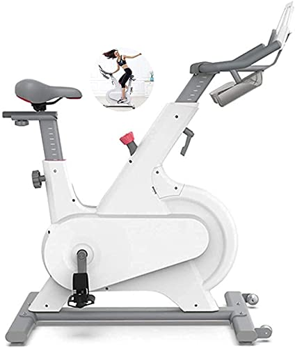 Mirror Mirror Exercise Bike Indoor Cycling Exercise Bikes 2021 Spinning Bike Workout Bike Bicycle with Heart Rate Monitor Adjustable Seat for Home
