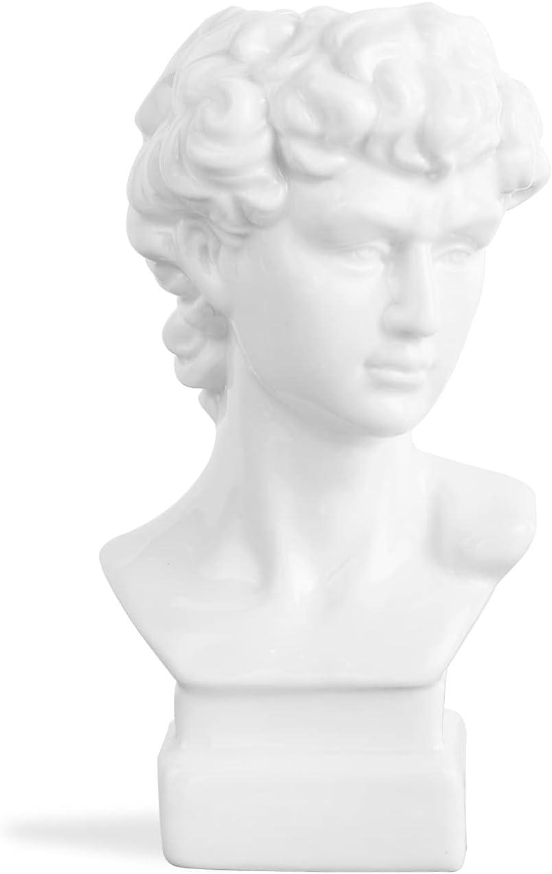 SANFERGE Men Head Ceramic Flower Vase, Art Creative Greek Roman Style Statue Sculpture Planter for Home Decor, Indoor Outdoor Statue, 6 Inch, Glossy White