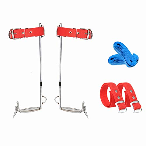 Tree Climbing Gear, Stainless Steel Tree Climbing Spikes, Climbing Set with Adjustable Safety Belt for Hunting Observation, Tree Work, Picking Fruit