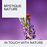 Touch Of Nature In Natures