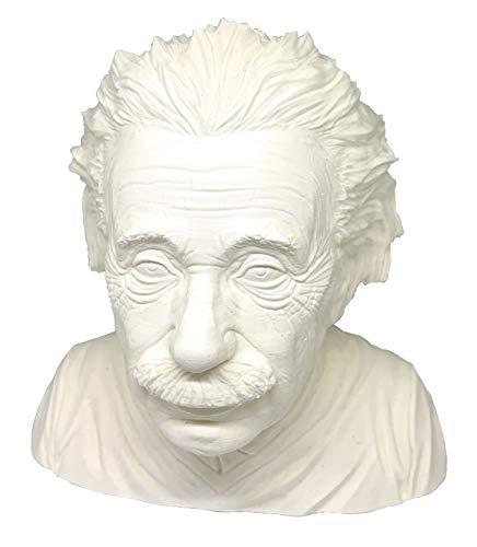 Albert Einstein Physiker Statue Büste Geschenk Realistischer Look Figur 15cm Made in Germany (Weiß)